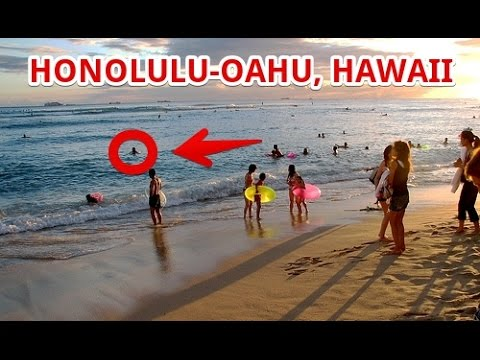 Honolulu Hawaii Travel Destinations - Things To Do and Know | Travel Fun Guide