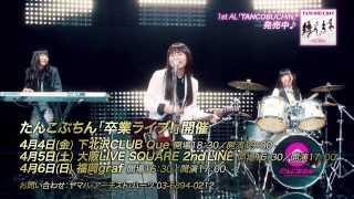 たんこぶちん 卒業ライブ! ◎4月4日(金)下北沢CLUB Que 開場18:30/開...