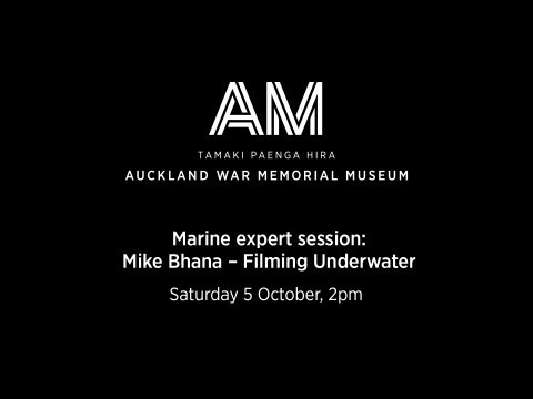 Marine Expert Session: Mike Bhana -- Filming Underwater