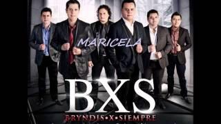 BXS BRINDIS X SIEMPRE.. MARICELA 2013