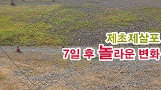 드론 비행장 제초제 항공방제 후기