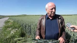 Агробизнесменът на България за 2000г Петър Байчев за тайните на успешното земеделие