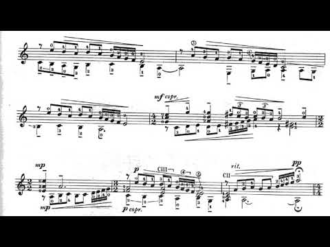 Mario Castelnuovo-Tedesco - No Hubo Remedio for Guitar (Score video)