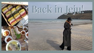 Where to go/what to eat in JEJU 🍊  vlog#13