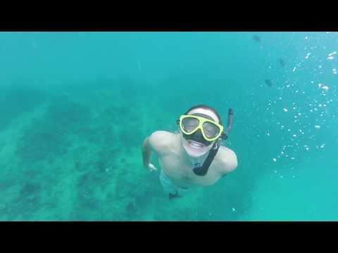 Hawaii Study Abroad with Semester at Sea