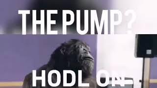 Bitcoin (HODL) - When moon lambo?😊