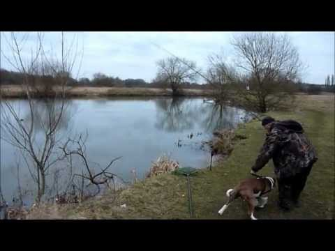 Pike And Zander Fishing On The River Soar