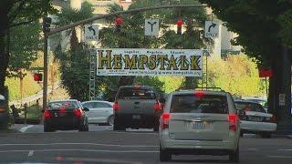Private company providing security at Hempstalk