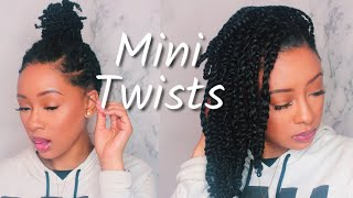 Mini Twists On Natural Hair | Protective Style