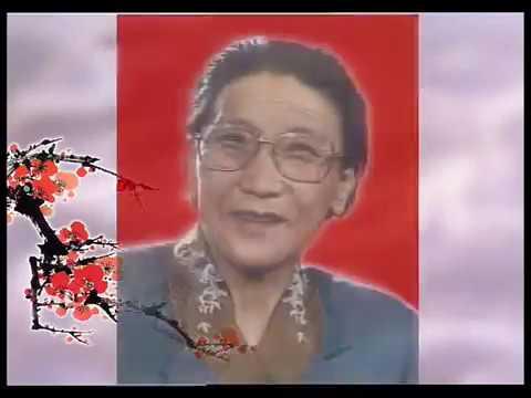 越调宗师申凤梅唱段集锦 高清