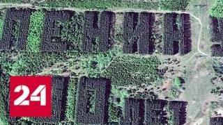 В Башкирии  нашли более 10 советских геоглифов - Россия 24