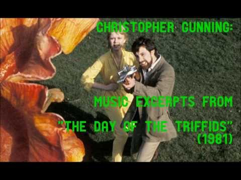 the day of the triffids essay questions