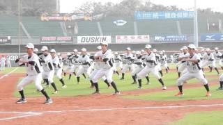 賽前棒球隊跳戰舞~跳之前還有熱身操真可愛 thumbnail