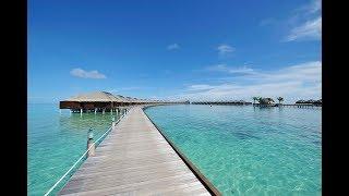 Ayada Maldives Resort Review