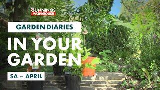 Gardening in April | South Australia | Bunnings Garden Diary