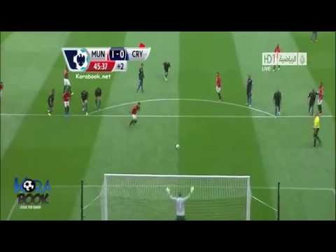 Manchester United 2-0 Crystal Palace  14.9.2013 All Goals [HD]