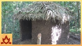 Primitive Technology: Palm Thatched Mud Hut