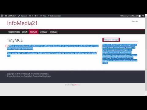 WordPress Anleitung geschützte Leerzeichen und Absätze