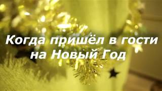 Когда пришёл в гости на Новый Год ОЖИДАНИЕ / РЕАЛЬНОСТЬ