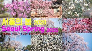 서울의 봄 2020_고프로 8 | Seoul's…