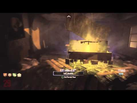 Black Ops 2: Green Run Town Survival Round 30 (death_unites_us)