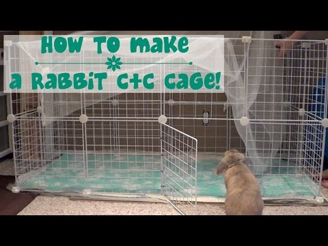 How to build a rabbit cage!