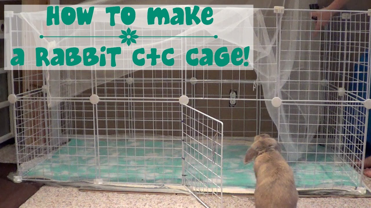 How to build a rabbit cage youtube for What to do to build a house