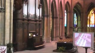 Festival Nevers les Orgues 2013, Nicolas Pien, orgue.
