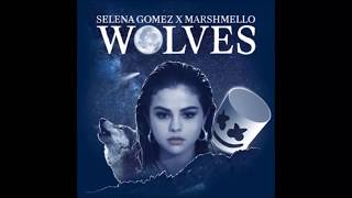 Wolves - Selena Gomez (Lyrics)