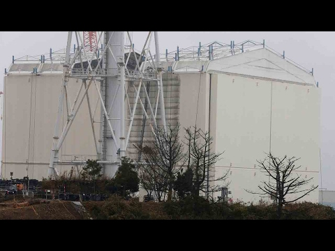 Chinese Embassy issues travel alert over record-high radiation levels at Fukushima
