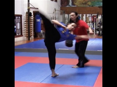 How To Do A Wheel Kick / Spin Kick - CyberDojang.com: Hwa Rang Do®