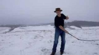 Bullwhip Cracking: The Singleton Special