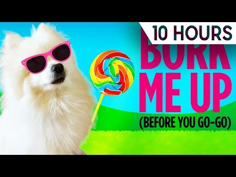Bork Me Up (Before You Dog-Go) | 10 HOURS