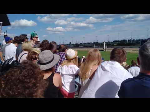 A race at Queen's Plate 2016