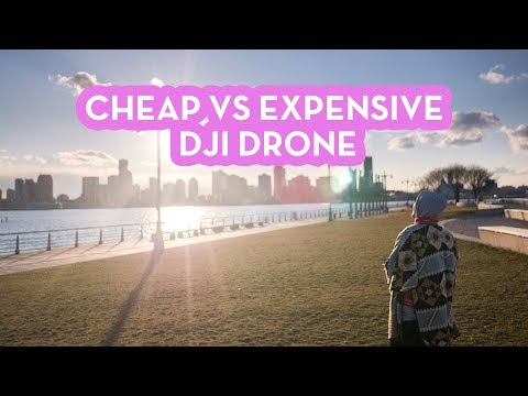 Cheap vs Expensive DJI Drone | Aerial Photography