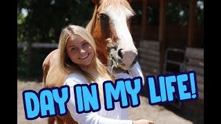 A Day in My Life   Attacked By a Cat, Feeding All My Pets, Life on The Farm! thumbnail