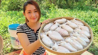 Yummy Cuttlefish Cooking With Palm Sugar Recipe - Cuttlefish Cooking - Yummy Cooking