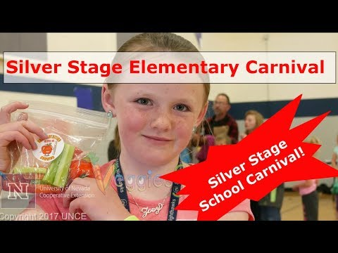 Silver Stage Elementary School Carnival 2017 May