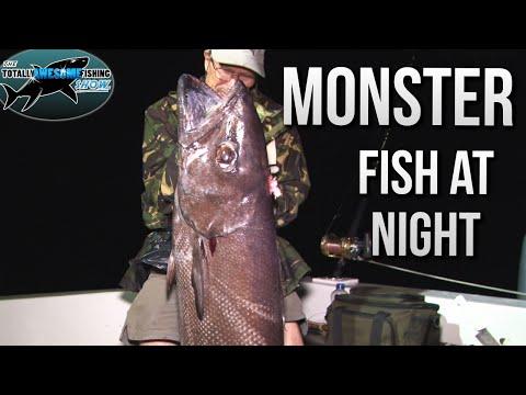 Fishing for Monster Fish at Night!! | TAFishing