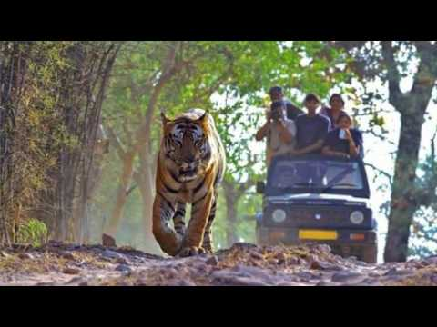 Bilaspur Tourism Places to Visit in Bilaspur  | Apna Chhattisgarh