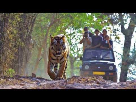 Bilaspur Tourism Places to Visit in Bilaspur  | Apna Chhattisgarh