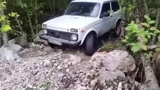 Моя машина нива!!