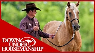 Clinton Anderson: Training a Rescue Horse, Part 3  Downunder Horsemanship