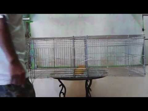 Taiwan Breeder Cage For Sale