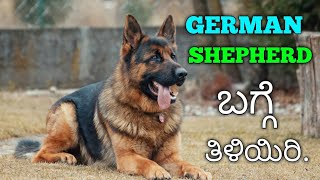 INTERESTING FACTS ABOUT GERMAN SHEPHERD DOG BREED /IN KANNADA/