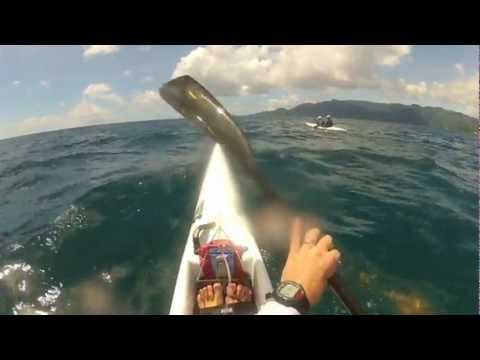 Eden to Anse Royale Paddle - Through the Marine Park