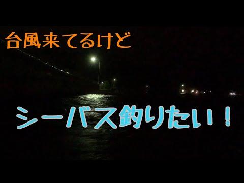 台風目前シーバスハンターDAIWA