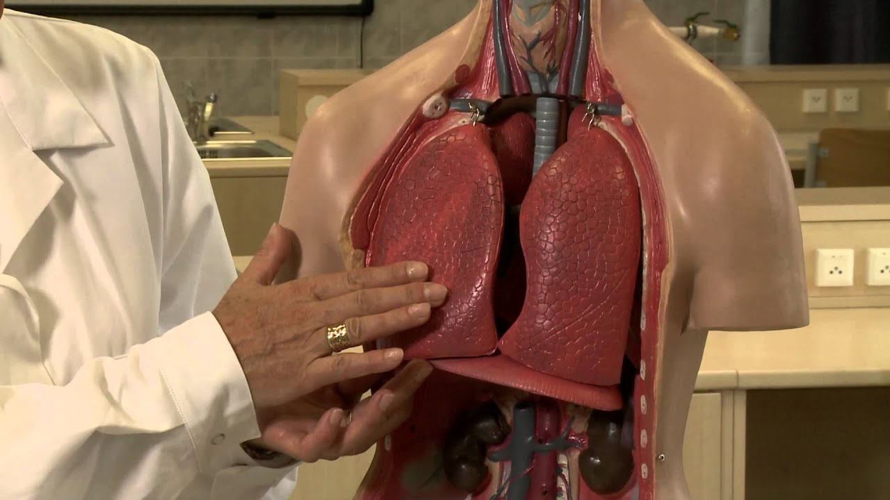 szabadalmi módszer a magas vérnyomás kezelésére milyen orrcseppeket lehet alkalmazni magas vérnyomás esetén