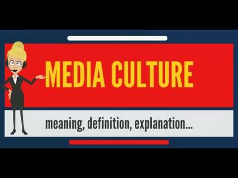 What is MEDIA CULTURE? What does MEDIA CULTURE mean? MEDIA CULTURE meaning, definition & explanation