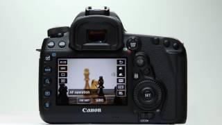 Canon ЕОС 5D Mark IV: перегляд АФ